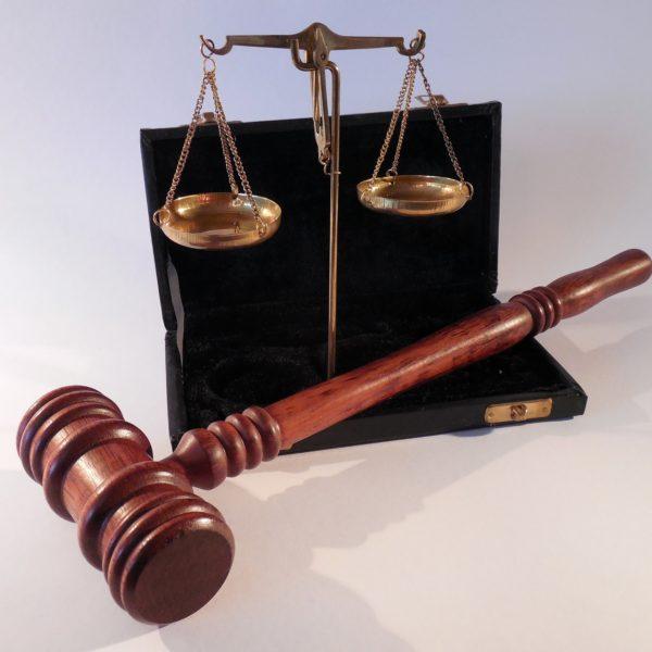 Arrêté du 25 mars 2015 fixant la liste des oiseaux représentés dans le département de la Guyane